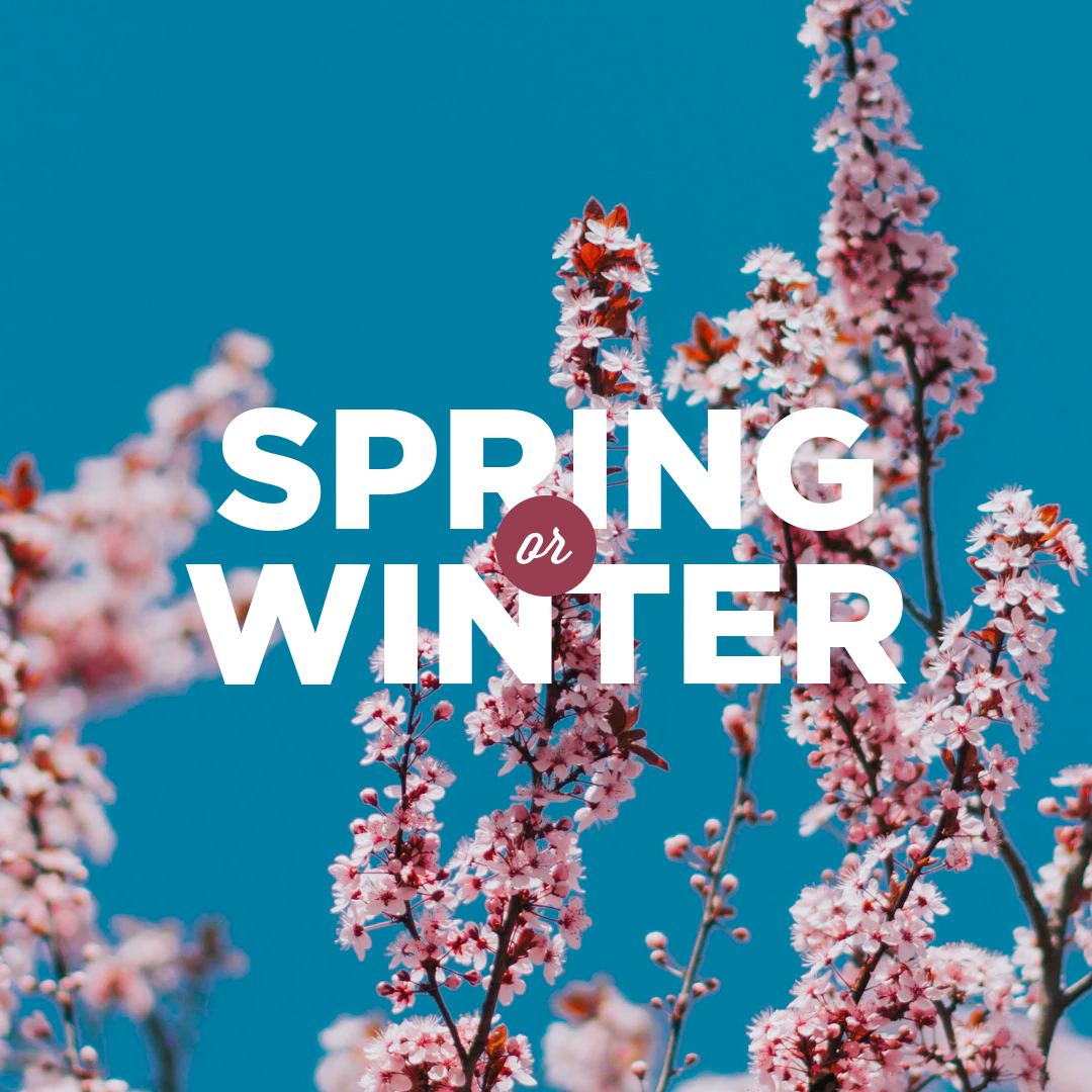 Spring or Winter